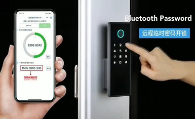 Fingerprint Intelligente Smart Lock